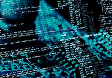 software_development_innerpage